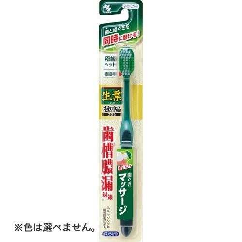 小林製薬 生葉 極幅ブラシ やわらかめ 1本 ×72個セット ※色は選べません。 【歯槽膿漏予防】