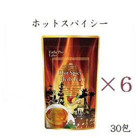 【×6セット】エステプロラボ ハーブティープロ ホットスパイシー 30包