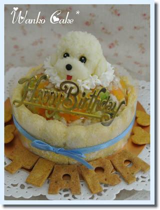 愛犬をモチーフにしたオリジナルな犬用ケーキをお作りします 年中無休 安心して召しあがれるお食事ケーキです お名前のクッキー付き 新作通販 ワンコケーキ ヘルシーディナーケーキ M 誕生日 犬用ケーキ 犬ケーキ