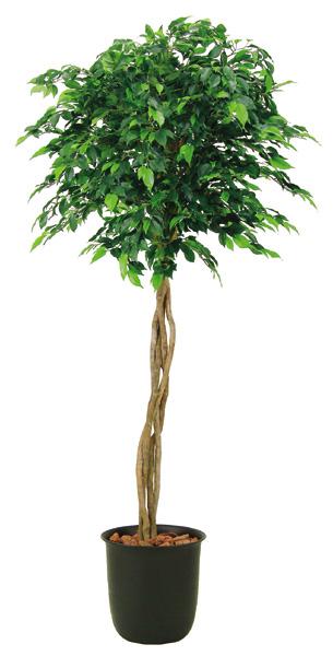 観葉植物 おしゃれ インテリア ベンジャミントピアリー 高さ200cm リビング リアル オフィス ギフト プレゼント フェイク 開店祝い 新築祝い 光触媒加工 人工観葉樹木 商品型番:059‐0010