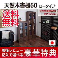本棚ガラス扉 天然木書棚60 ロータイプの通販【送料無料】