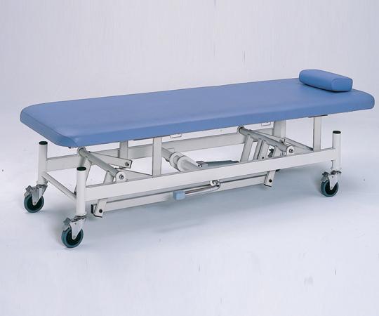 【送料無料/代引不可】日進医療器 油圧上下式診察台 キャスター付き 650×1900×500~825(mm) TY430C