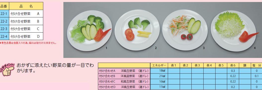 イワイサンプル 糖尿病関連 「付け合せ野菜」1式セット/食品サンプル/栄養指導用フードモデル