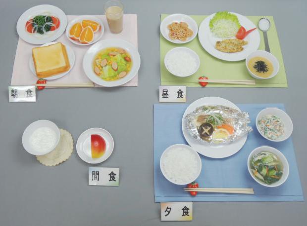 イワイサンプル 糖尿病関連 「脂質代謝異常2 1800kcal」1式セット/食品サンプル/栄養指導用フードモデル