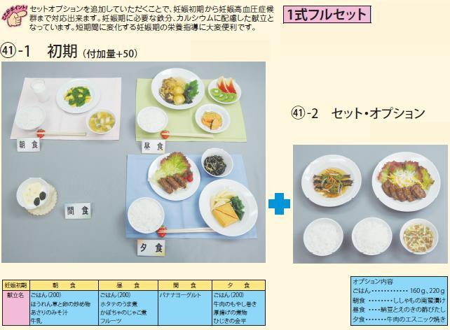 イワイサンプル 妊婦食 献立 1式フルセット/食品サンプル/栄養指導用フードモデル