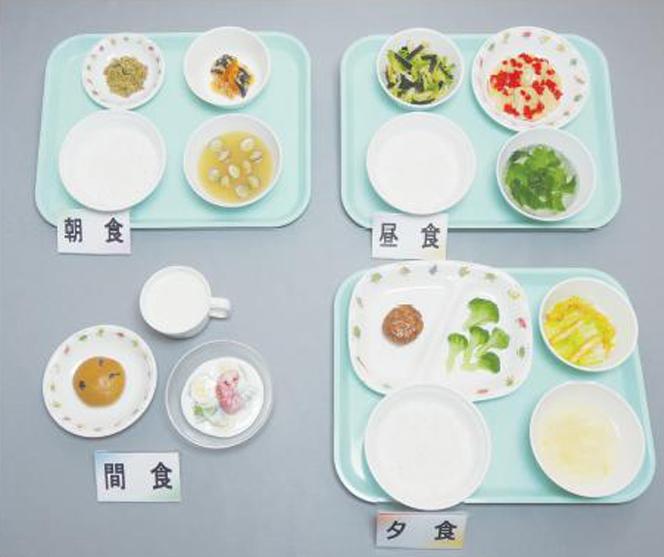 イワイサンプル 幼児食 献立【1~2歳児】/食品サンプル/栄養指導用フードモデル