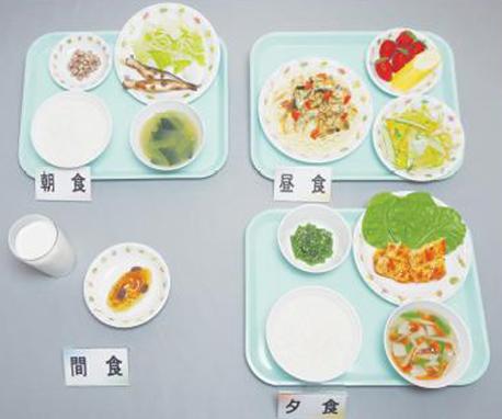 イワイサンプル 学童食 献立【6~7歳児】/食品サンプル/栄養指導用フードモデル