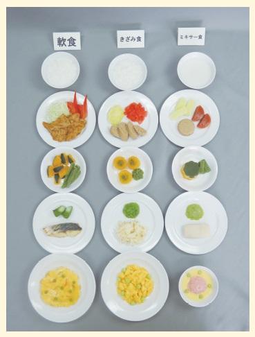 イワイサンプル 介護食 1式フルセット/食品サンプル/栄養指導用フードモデル