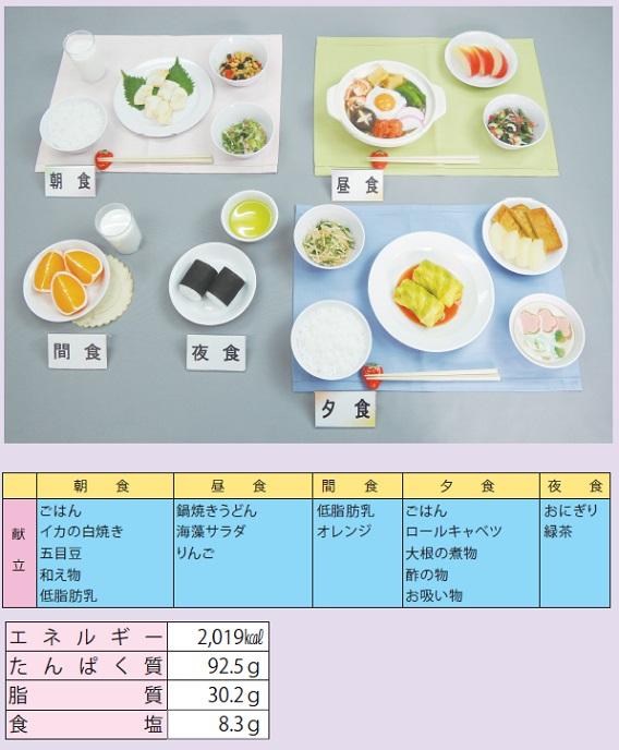 イワイサンプル 慢性肝炎(60kg) 1式セット/食品サンプル/栄養指導用フードモデル