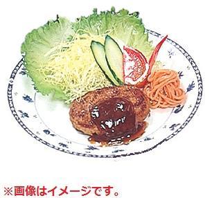 イワイサンプル 43.ハンバーグ皿盛 外食フードモデル 各種/食品サンプル/栄養指導用フードモデル