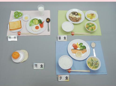 イワイサンプル 糖尿病関連 「高尿酸血症/献立例1800キロカロリー」1式セット/食品サンプル/栄養指導用フードモデル
