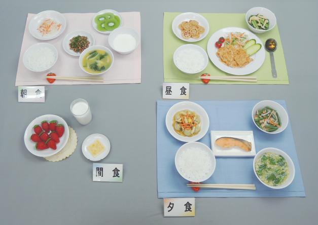 イワイサンプル 糖尿病関連 「脂質代謝異常1 1600kcal」1式セット/食品サンプル/栄養指導用フードモデル