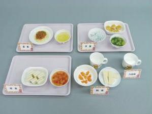 イワイサンプル 離乳食 献立モデル(Bセット)【12~18ヶ月頃】/食品サンプル/栄養指導用フードモデル