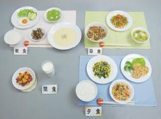 イワイサンプル 授乳婦食 献立「一式フルセット」※42-Aと42-Bもセットです。/食品サンプル/栄養指導用フードモデル