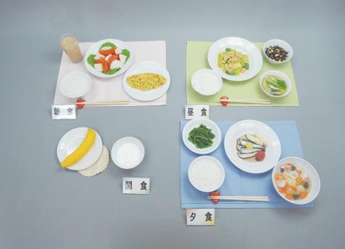 イワイサンプル 健康な高齢者の献立 1800kcal【58-A ごはんセット】/食品サンプル/栄養指導用フードモデル