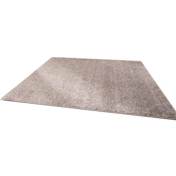 ファイテン(phiten) ラグマット(約190×約240cm) BE747000