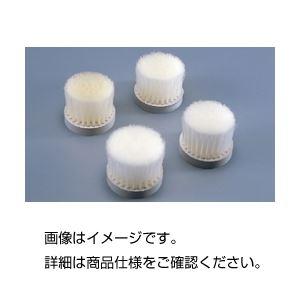 (まとめ)ふるい用ナイロンブラシNo4 適用ふるい(目の開き):53メッシュ 【×5セット】