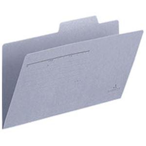 (業務用100セット) プラス 個別フォルダー FL-021IF 統一伝票 青 10枚 ×100セット