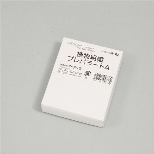 (まとめ)アーテック プレパラートセット 【植物組織 A】 9種 ガラス製 【×5セット】