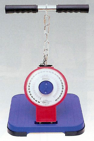 TAKEI(竹井機器) アナログ背筋力計(バックA) T.K.K.5002