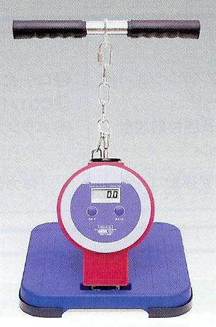 TAKEI(竹井機器) デジタル背筋力計(バック-D) T.K.K.5402