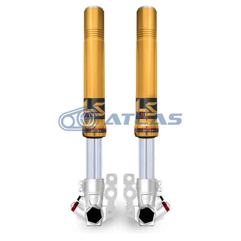 RPM GII LS 倒立フロントフォーク 1~3型CYGNUS X(シグナスX)用 カラーオーダー