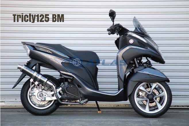 CORES コアーズ Exhaust Tricity125 トリシティ CE01 S-Type Ver-BM CE01-TR0001-BM マフラー