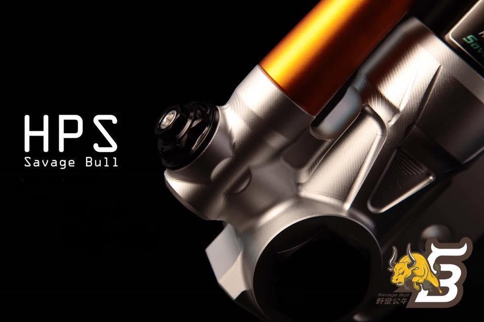 Savage Bull HPS-IIフロントフォークセット 4~5型シグナスX(CYGNUS X) カラーオーダー