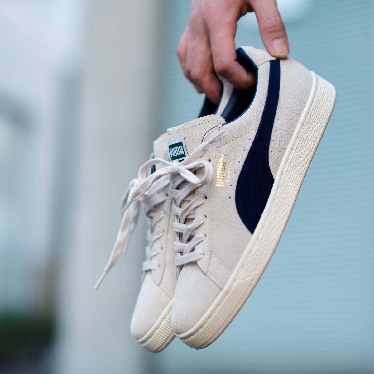 8ff57fe275dd PUMA SUEDE which is loved as a constant seller of the street for a long  time. PUMA SUEDE using the shoe tree most stylish in history which the  above all ...