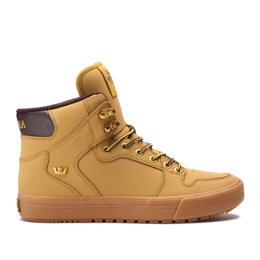 SUPRA VAIDER CW(スープラ ベイダー CW)(AMBER GOLD-LIGHT GUM)