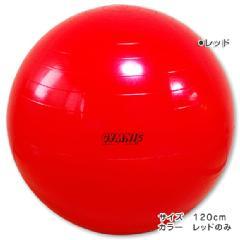 ☆フィジオギムニク☆バランスボール120cm