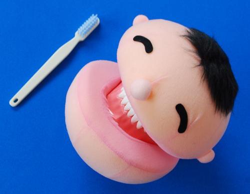 にこにこ歯磨き指導セット(歯ブラシ付き)