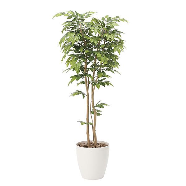 光触媒 観葉植物 植物 インテリア ケヤキ 人工観葉植物 グリーン おしゃれ 高さ180cm