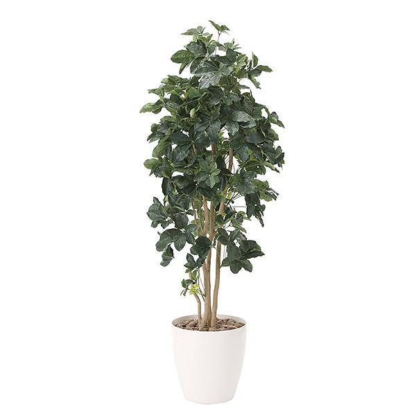 光触媒 観葉植物 植物 グリーン おしゃれ インテリア シェフレラ 人工観葉植物 高さ180cm