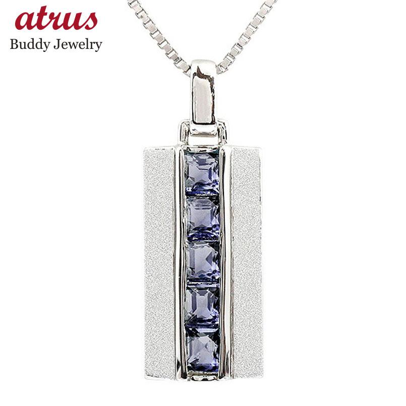 メンズ プラチナネックレス アイオライト バーネックレス ペンダント pt900 チェーン ホーニング加工 つや消し 男性用 人気 宝石