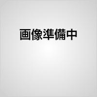 【売り切り御免!】 5687850:老舗工具屋 AT      NTK押え金     TOOL    CVL6   -DIY・工具