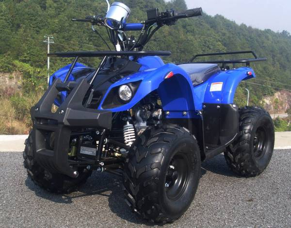 四輪セミバギー 公道走行可能 50cc HL50BL