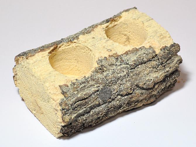 16gのゼリーがすっぽりはまる 朽木 エサ皿16g用 正規品 かまぼこ型二穴 お気にいる