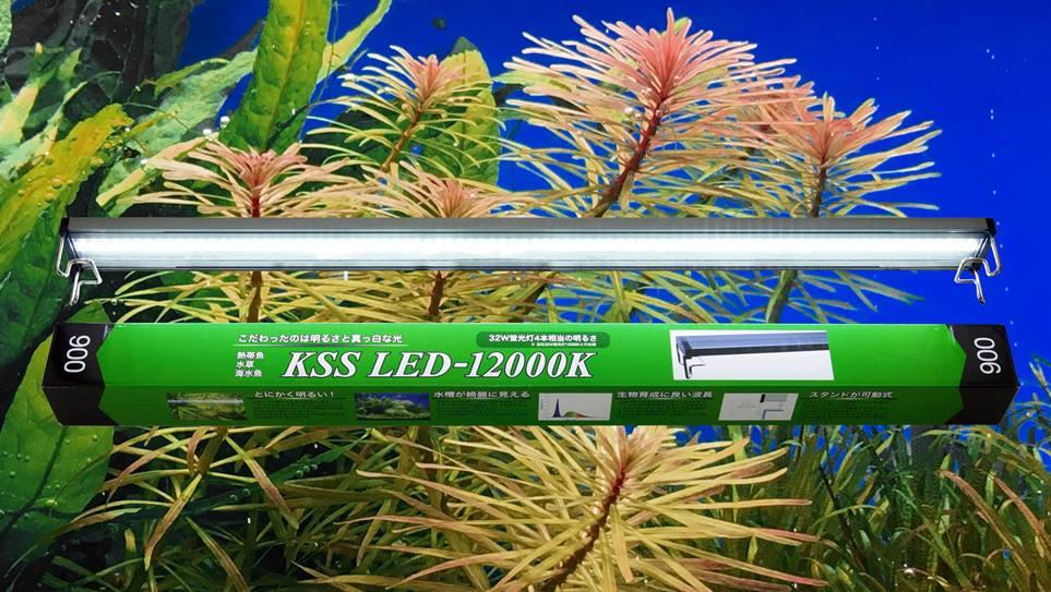 【NEW!】KSS【NEW!】KSS LED-12000K LED-12000K 900, p.o.s.h. Online Store:25525c1f --- coamelilla.com