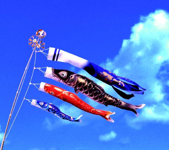 【特選】 最高級鯉のぼり 峰雅 1.5m万能セット 玉龍吹流 ちりめん織物使用 金箔ぼかし撥水加工 【ベランダ用鯉のぼり】【こいのぼり マンション】【smtb-KD】