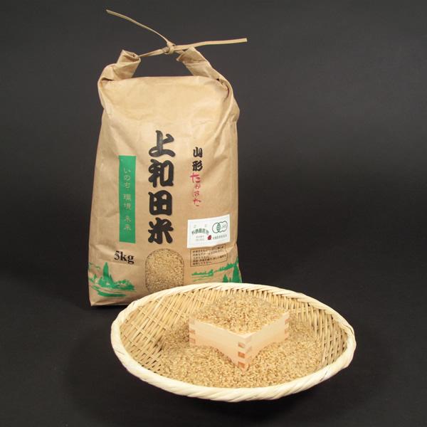 米食味コンクールで金賞を受賞した鈴木さんの杭掛け天日干し 無農薬 特別栽培 コシヒカリ 玄米 10kg 【令和元年産特A米】