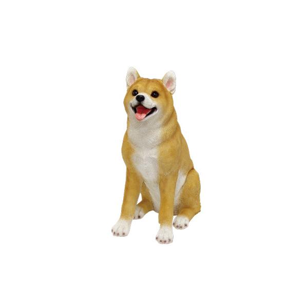 チアフルフレンズ 柴犬のソラ  ma-100379300