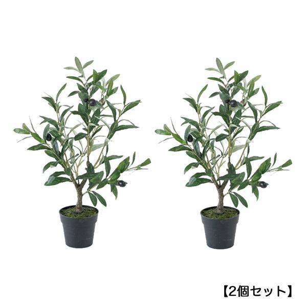 【メーカー直送】【代引き不可】フェイクグリーン オリーブの木 50cm【2個セット】  sp-cxgk1011