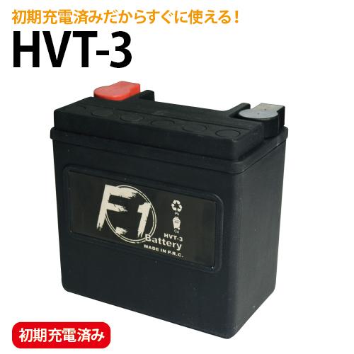 ハーレー用 YTX14L-BS 65958-04A 65984-00 互換 バイク バッテリー 定番 セール特価 HVT-3 YTX14L-BS互換 充電済み バイク用 ハーレー 爆買い新作 安心の1年保証付き F1