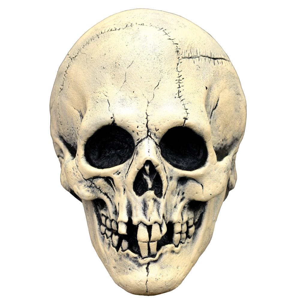 スカル ラテックス フルマスク 大人用 骸骨 ドクロ ホラーマスク