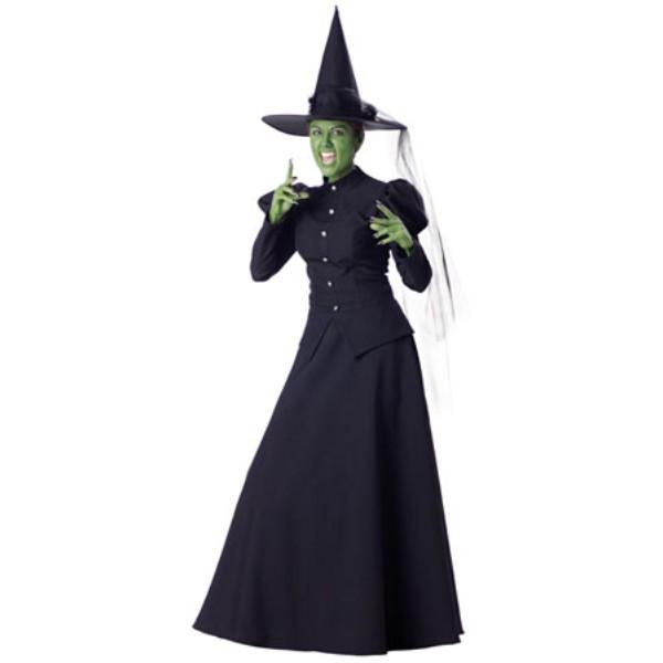 Wicked Witch オズの魔法使い ウィケッド 魔女 衣装、コスチューム  大人女性用 HQ