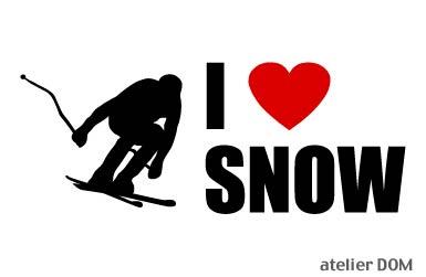 (訳ありセール 格安) I LOVE SNOW Lサイズ 保障 ステッカースキー5