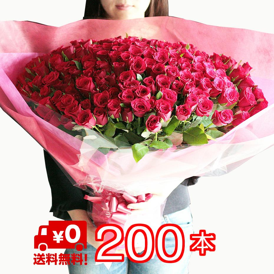 【送料無料】バラ 200本 花束 無料のメッセージカード付 母の日 記念日 誕生日 ローズ 発表会 プロポーズ【楽ギフ_メッセ入力】