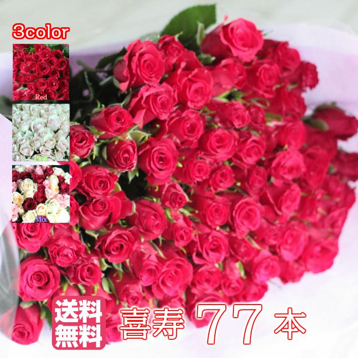 バラ77本の花束【送料無料・全色同価格】喜寿のお祝いや誕生日などのプレゼントにおすすめ  女性に人気のギフトです 誕生日/還暦/送別/喜寿/結婚記念日/贈り物/バラ 花束