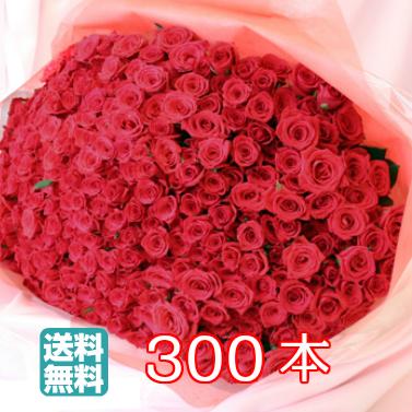 【送料無料】バラ 300本 花束 バレンタイン ギフト 無料メッセージカード付き 記念日 ギフト 誕生日 薔薇 ローズ 発表会 生花 プロポーズ